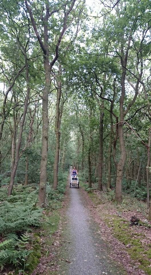 soci.bike in het bos