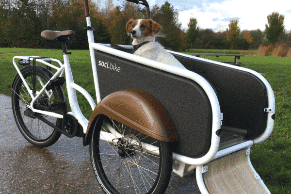soci.bike hondenbakfiets winner show